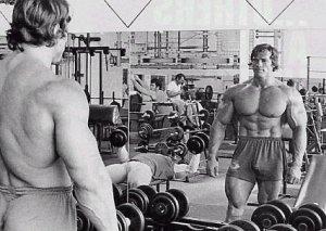 arnold_schwarzenegger-quotes-bodybuilding